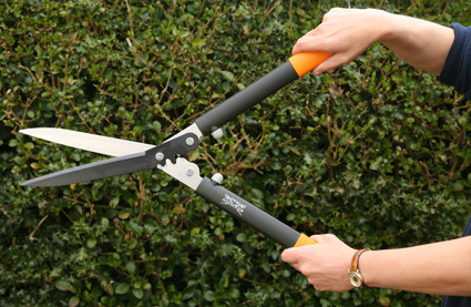 Greatest Manual Grass Shears