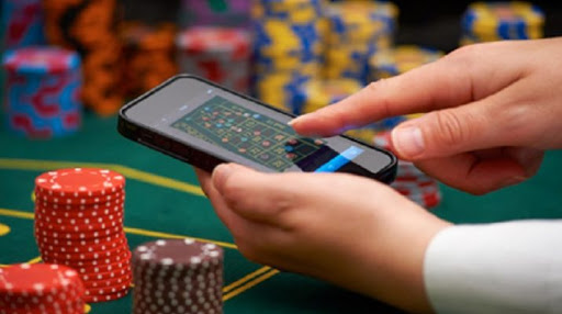 Aid you Survive within the Online Casino World